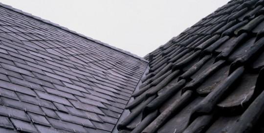 Blauwe boomse dakpannen en Natuurleien